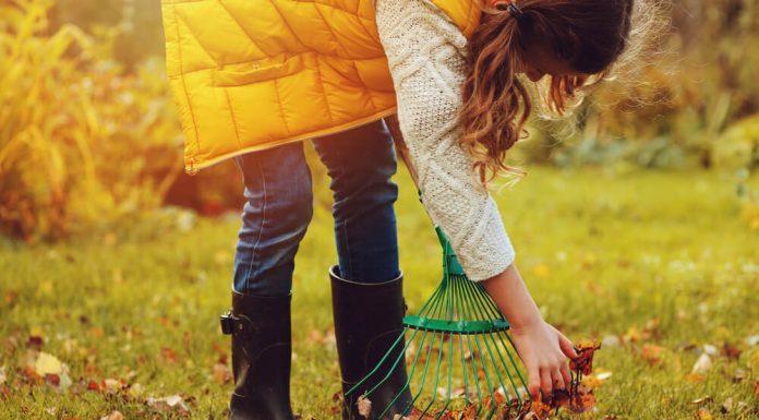 Pripravte záhradu na príchod zimy